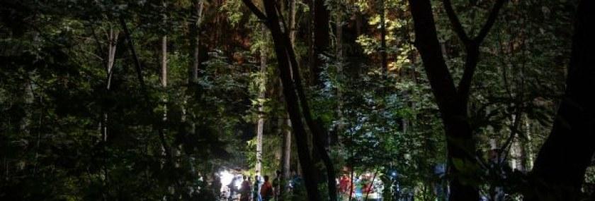 3Parentesi - ORME Festival